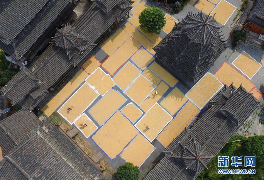"""(文化)(5)中国""""二十四节气""""正式列入联合国非遗名录"""